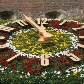 Квітковий годинник у Львові. Фото
